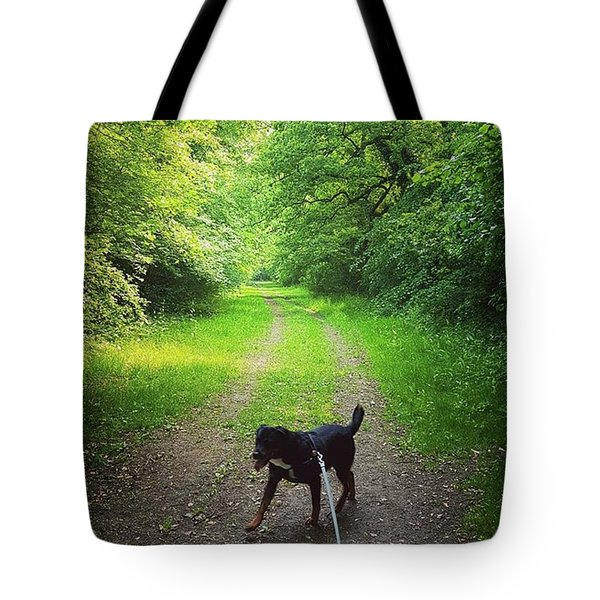 Bridleway Dog Walk Tote Bag