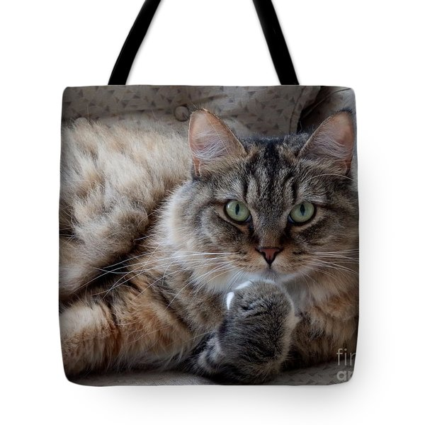 What Did You Say? Tote Bag