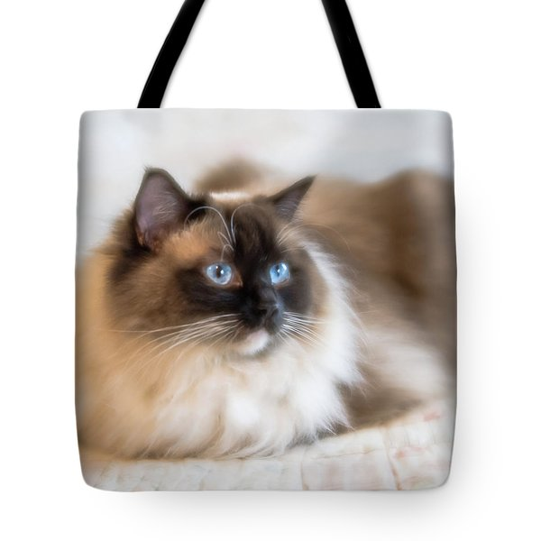 What Does She See Tote Bag