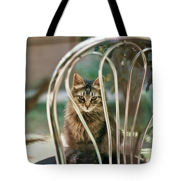 What Does This Cat Know About Us?  Tote Bag