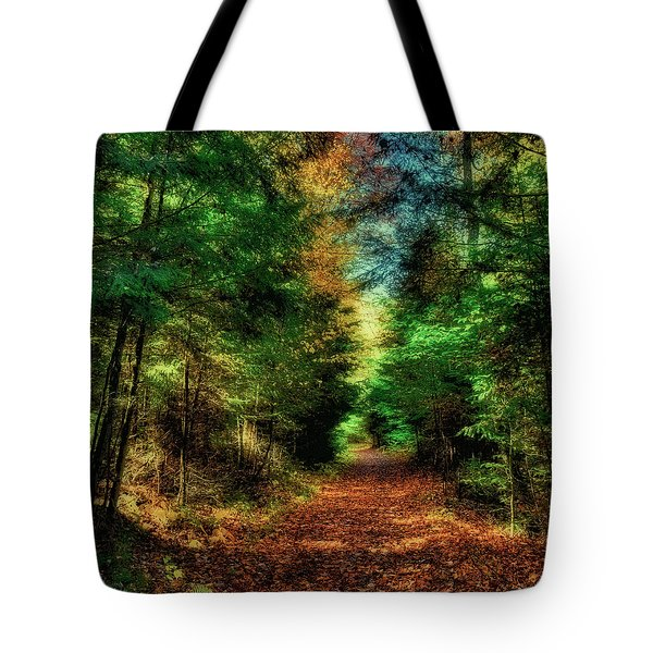 What Dreams May Come 6 Tote Bag