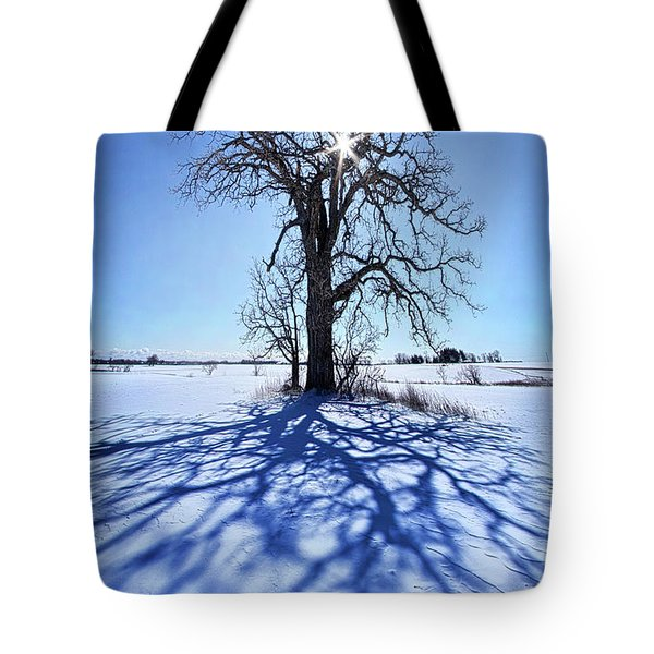 Tote Bag featuring the photograph What I Am, What I Was, What I Will Be by Phil Koch