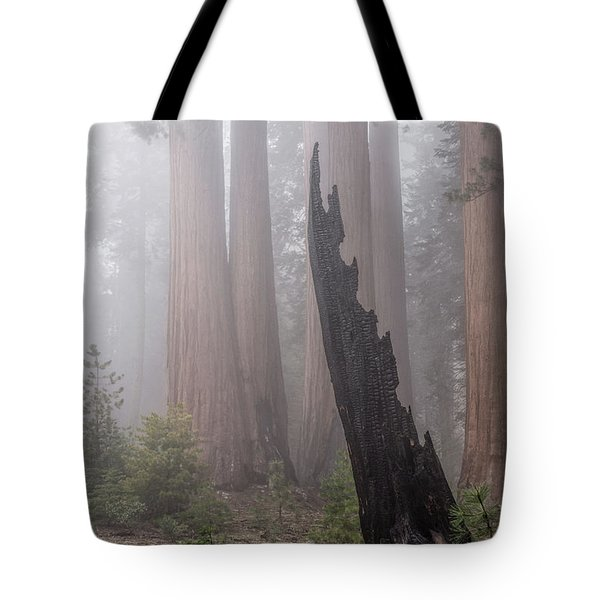 Tote Bag featuring the photograph What Lurks In The Forest by Peggy Hughes