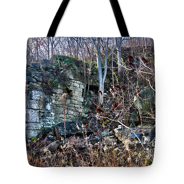 What Was Here? Tote Bag
