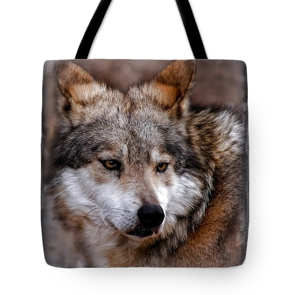 Tote Bag featuring the photograph What Was That by Elaine Malott