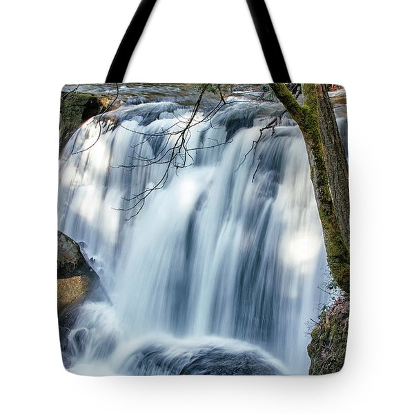 Whatcom Falls Tote Bag