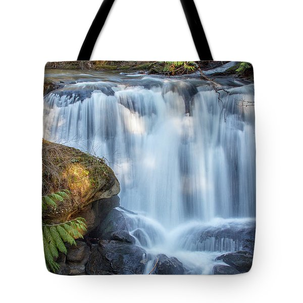 Whatcome Falls Tote Bag