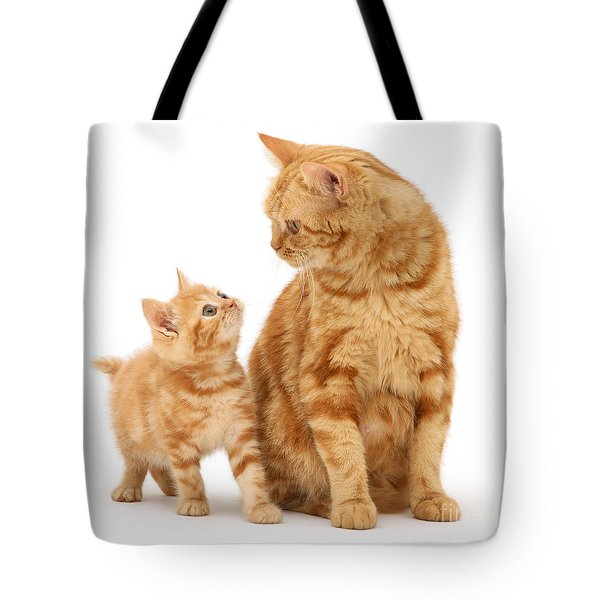 Tote Bag featuring the photograph What's For Dinner, Mum by Warren Photographic