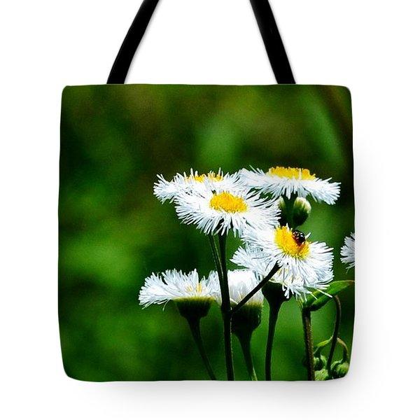 Bellis Daisy Tote Bag