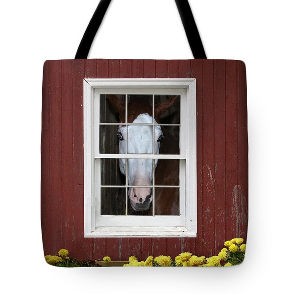 What's Out There? Tote Bag