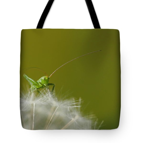 Tote Bag featuring the photograph What's The Time.... by Richard Patmore