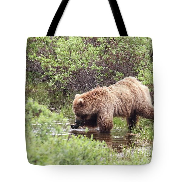 What's This? Tote Bag