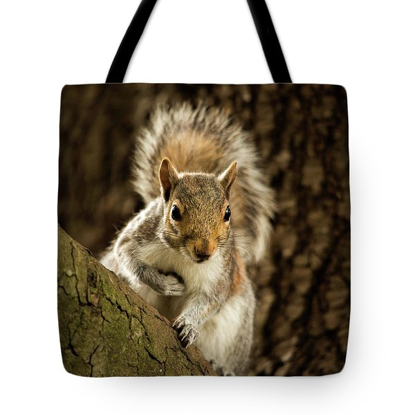 Tote Bag featuring the photograph What's Up? by Bob Cournoyer