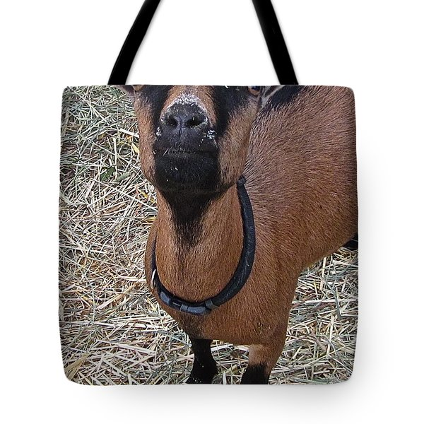 Whats Up Doc Tote Bag by Gwyn Newcombe