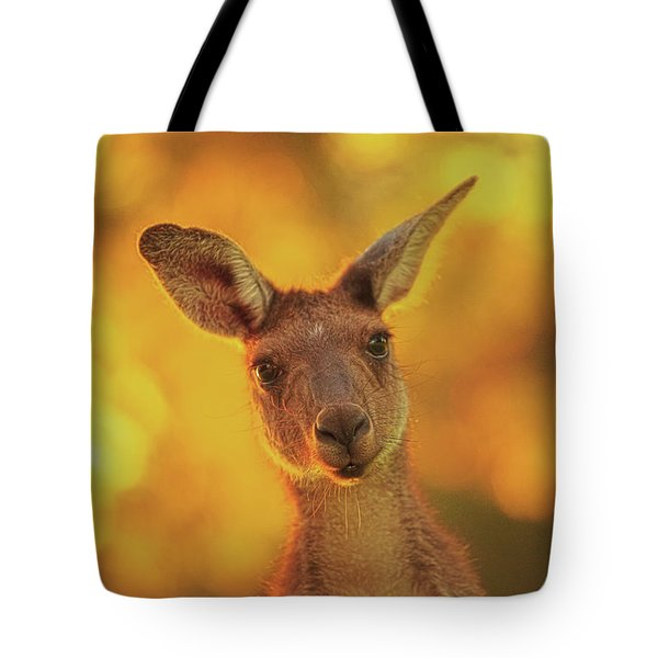 Tote Bag featuring the photograph What's Up, Yanchep National Park by Dave Catley