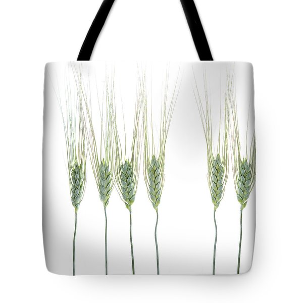 Tote Bag featuring the photograph Wheat 1 by Rebecca Cozart