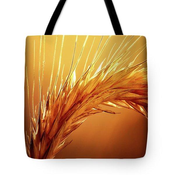 Wheat Close-up Tote Bag