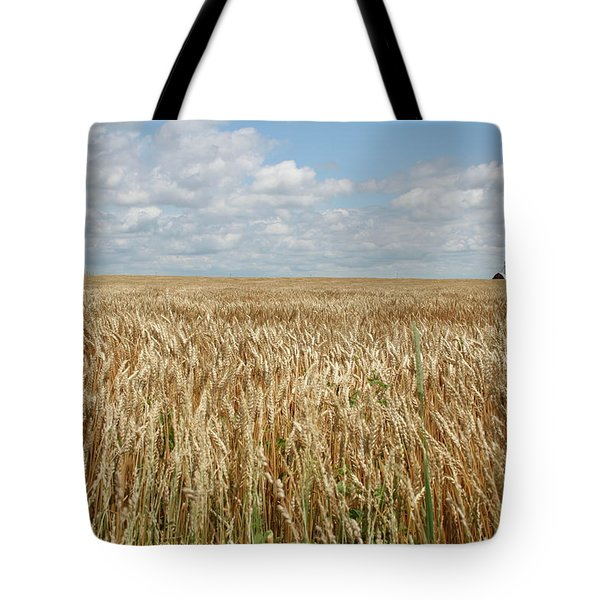 Tote Bag featuring the photograph Wheat Farms by Dylan Punke