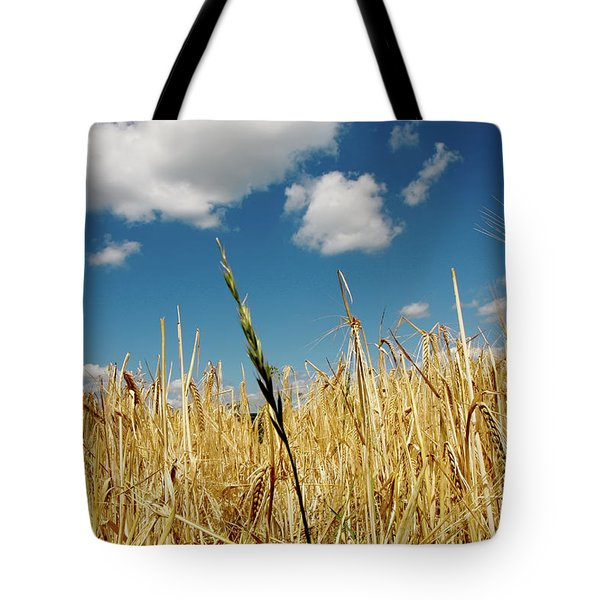 Tote Bag featuring the photograph Wheat On The Rhine by KG Thienemann