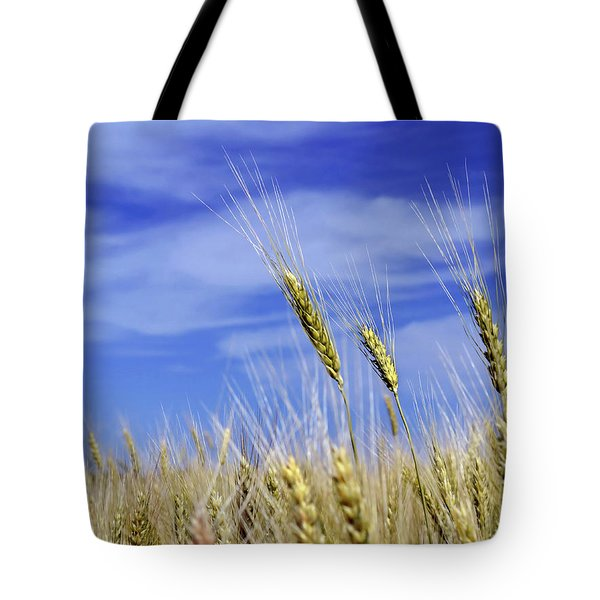 Wheat Trio Tote Bag by Keith Armstrong