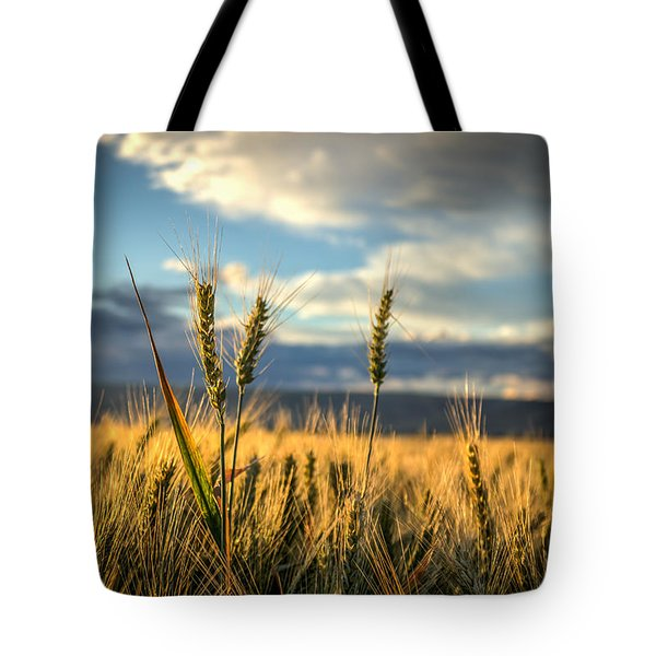 Wheat's Up Tote Bag by Brad Stinson
