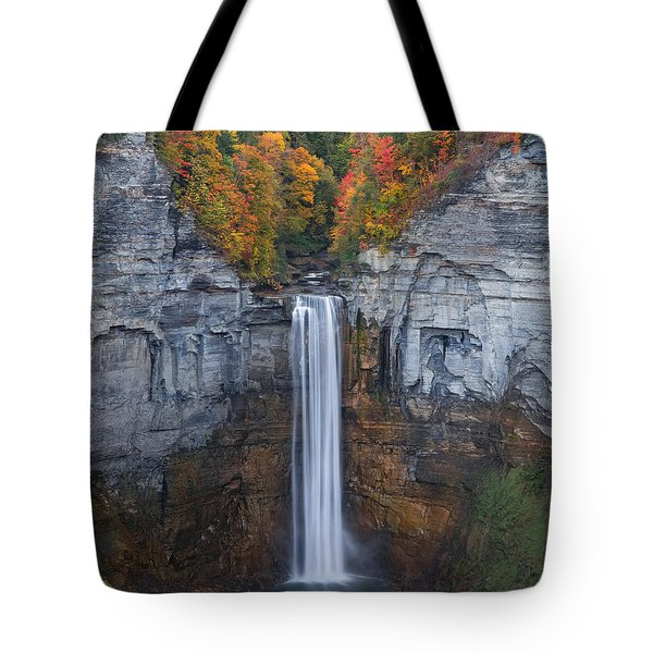 Tote Bag featuring the photograph When Autumn Falls by Phil Abrams