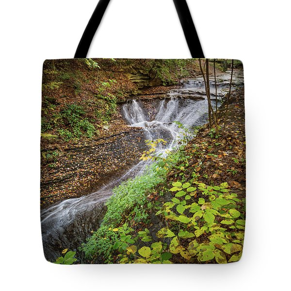 Tote Bag featuring the photograph When The Leaves Fall by Dale Kincaid