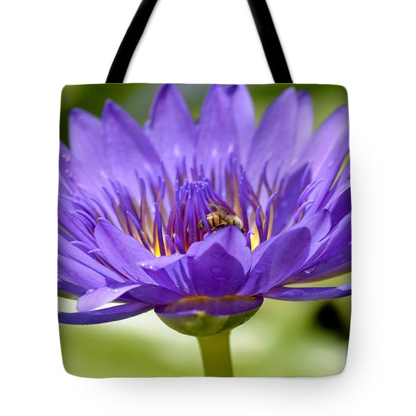 When The Lily Blooms Tote Bag