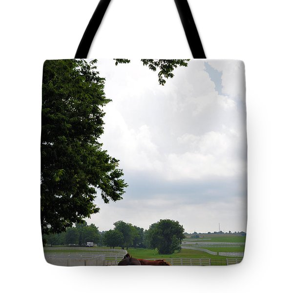When The Winds Begin To Sing Tote Bag