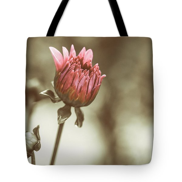 When We Were Young Tote Bag