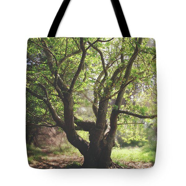 When You Need Shelter Tote Bag by Laurie Search