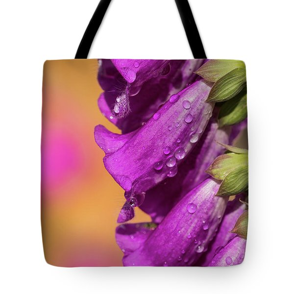 Where Color Grows Tote Bag