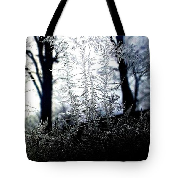 Where Dawn And Dusk Meet Tote Bag by Danielle R T Haney