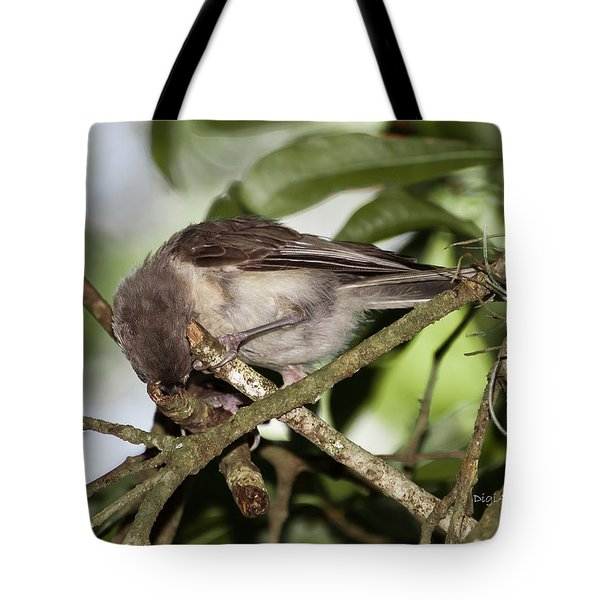 Where Did It Go Tote Bag by DigiArt Diaries by Vicky B Fuller