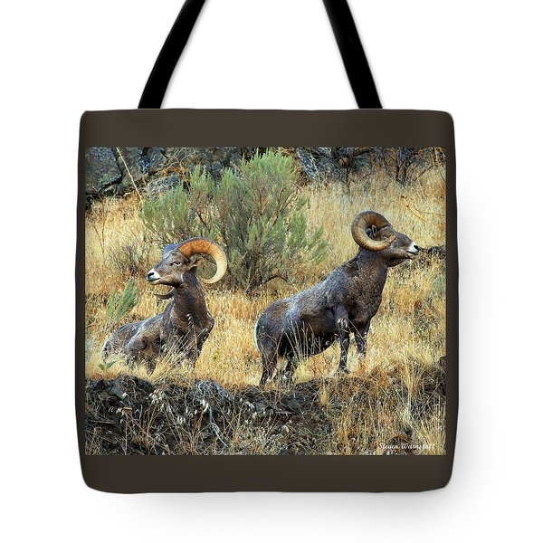 Where Did They Go? Tote Bag by Steve Warnstaff