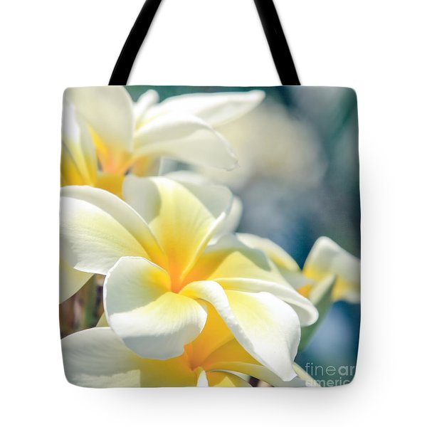 Where Happy Spirits Dwell - Cearnach Tote Bag