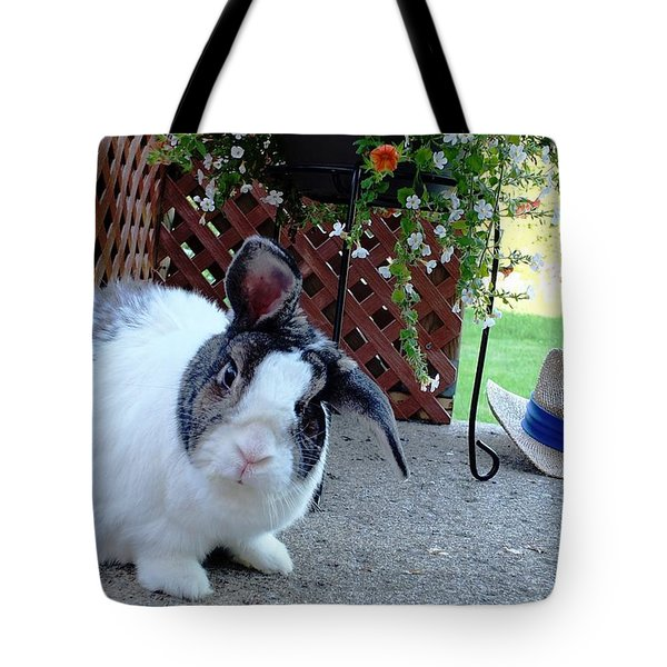 Tote Bag featuring the photograph Where Is My Hat? by Vicky Tarcau
