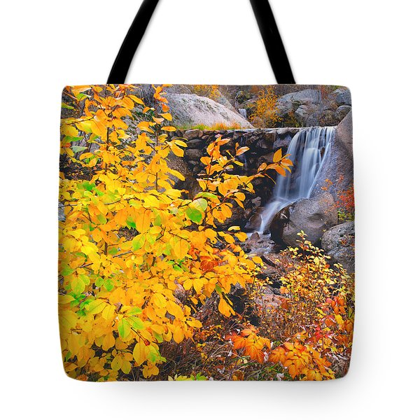 Where Peaceful Waters Flow Tote Bag by Tim Reaves