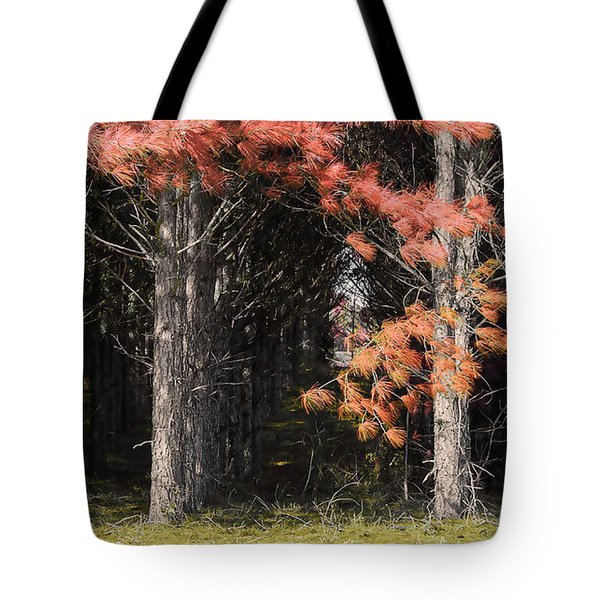 Where The Fairies Go Tote Bag