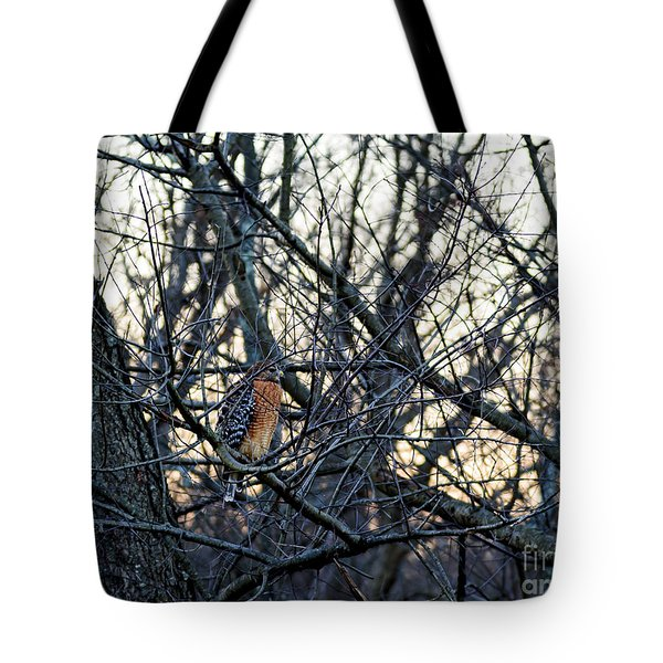 Where The Wild Things Are Tote Bag by Sandy Molinaro