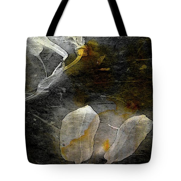 Where There Had Been Light IIi Tote Bag