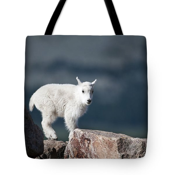 Tote Bag featuring the photograph Where's Mom? by Gary Lengyel