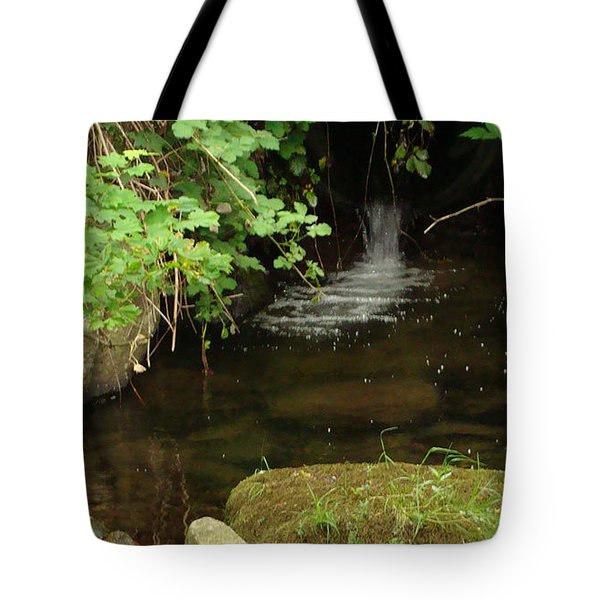 Where's The Fish? Tote Bag by Rod Jellison