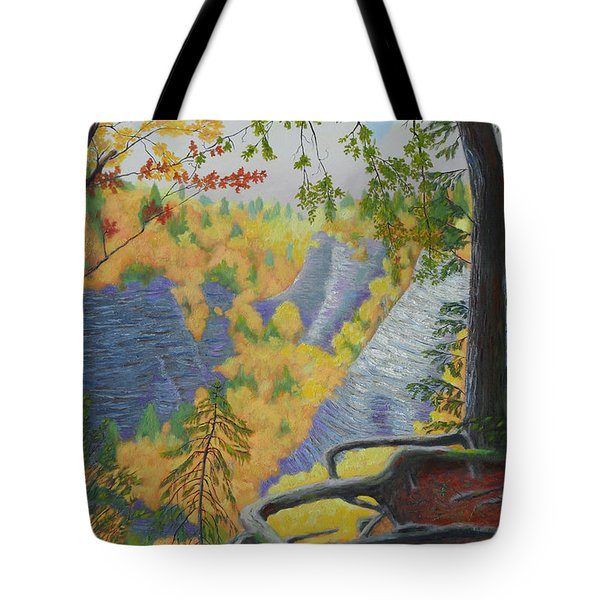Whetstone Gulf State Park Ny Gorge Tote Bag