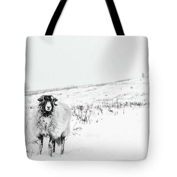 Which Way Is South? Tote Bag