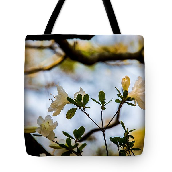 Tote Bag featuring the photograph Whie Azaleas Under A Dogwood Tree by John Harding