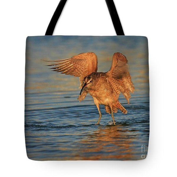 Whimbrel Colors Tote Bag
