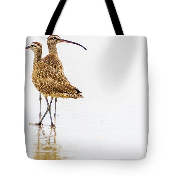 Whimbrel Sandpiper On The Beach Tote Bag
