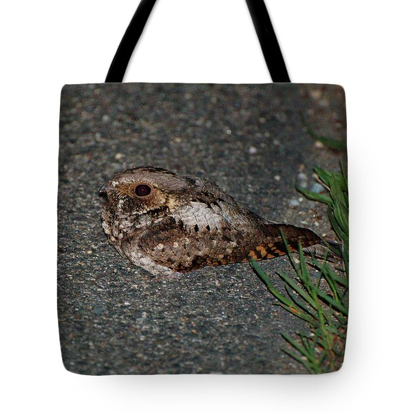 Whip-poor-will Tote Bag