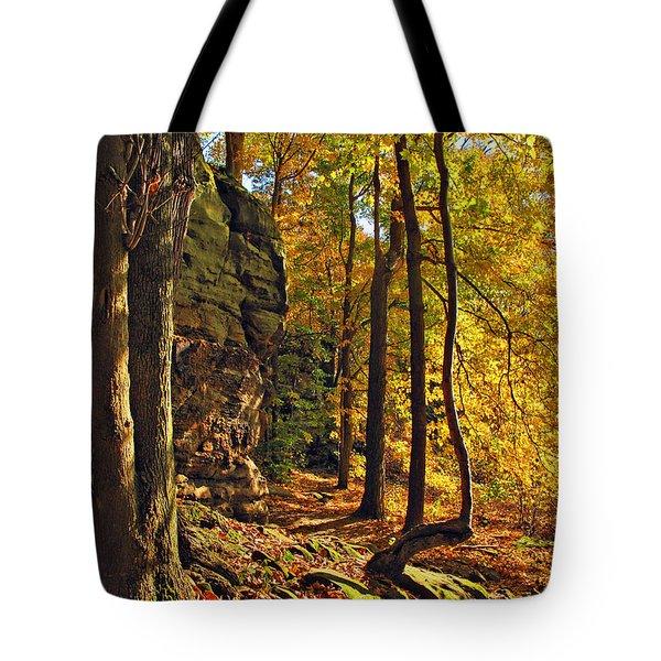 Whipp's Ledges In Autumn Tote Bag by Joan  Minchak